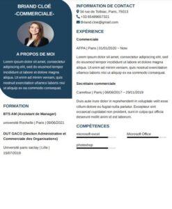 modèle de CV simple à remplir gratuitement