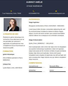 Modèle de CV d'étudiant sans expérience à télécharger gratuitement