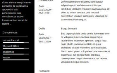 Modèle de CV sans photo à télécharger gratuitement dans Word