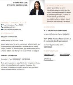 Modèle de CV stage à télécharger gratuitement